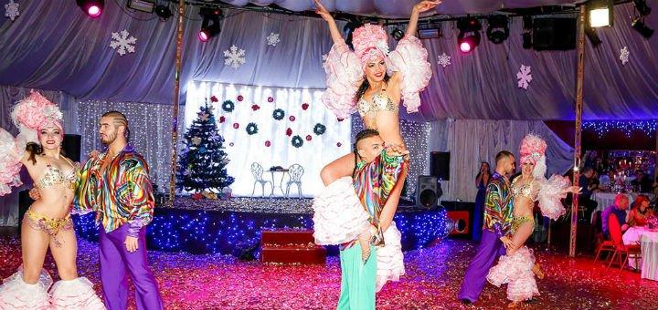 Скидка до 25% на празднование нового года в концерт-холле «Allegro»