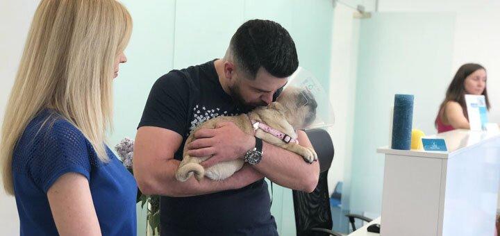 Программа «Ваши питомцы: первый год жизни» от ветеринарной клиники «Animal Clinic»