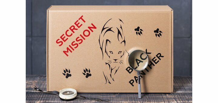 Скидка 20% на квест в коробке «Secret mission «Black Panther»!