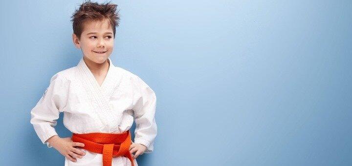1 месяц занятий дзюдо для детей в школе «Сяйво XXI» на Оболони