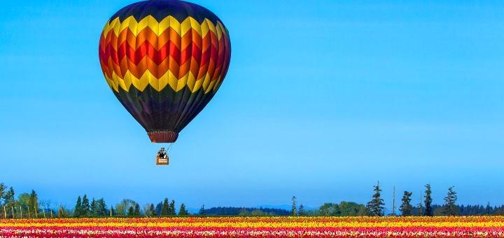 Скидка 20% на полет над цветущими полями Добропарка на воздушном шаре от «АсАвиа Украина»