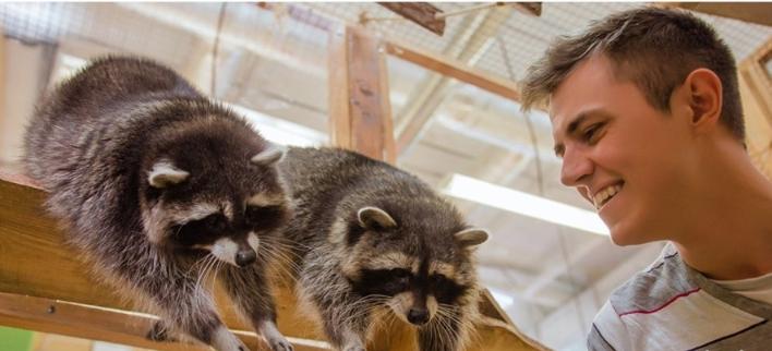 Посещение контактного зоопарка для взрослых и детей в «Макки-Пакки» в «Сити-центре» на Таирово