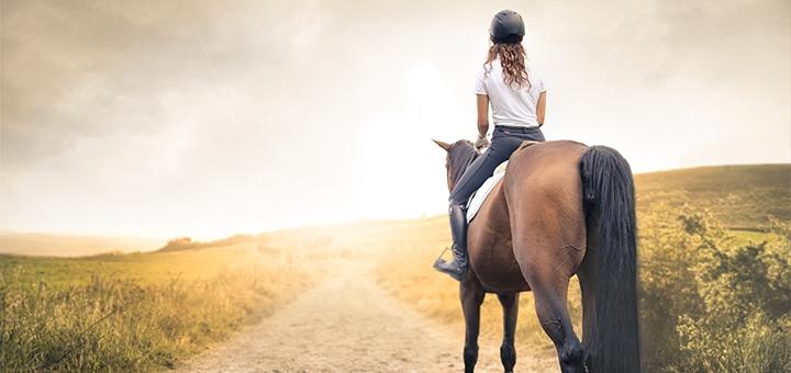 Скидка 38% на прогулку на лошади или пони от конюшни «Олимп»