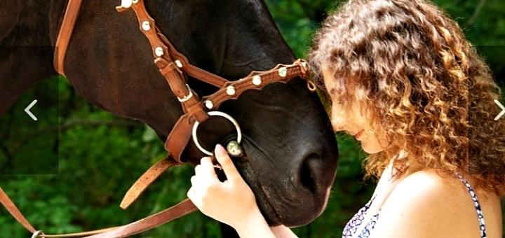 Скидка до 72% на конные прогулки от клуба «Скиф»