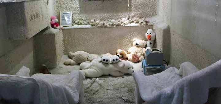 До 20 посещений соляной комнаты в оздоровительном комплексе «Дана-Вита»