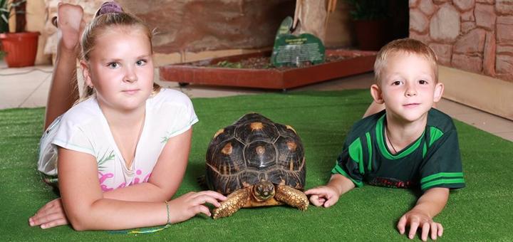Скидка 55% на билеты в зоопарк «EKZOland» в ТРЦ «Dream Town»